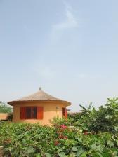 Case jardin